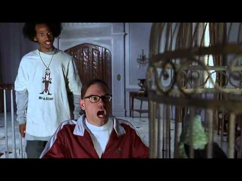 Talking Parrot Scary Movie 2