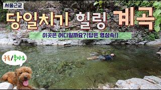 [서울근교]경기도지장산계곡/여름계곡/물놀이/당일치기/계…