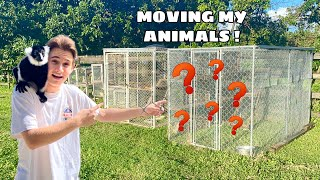 MOVING ALL MY ANIMALS TO MY NEW ZOO ! Part 1
