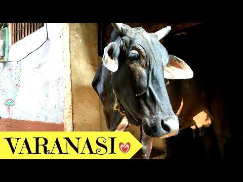 VARANASI - Adventures In India