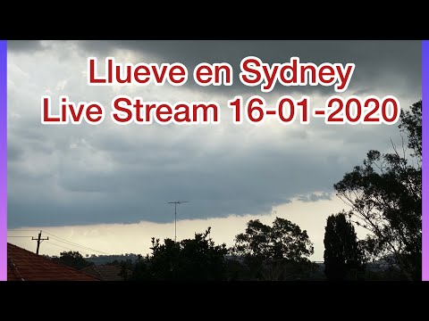 Llueve En Sydney Y Algunas Otras Partes De Australia | En Vivo Desde Sydney