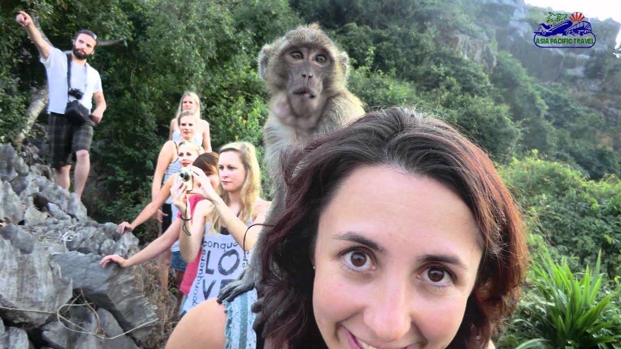Monkey Island Like