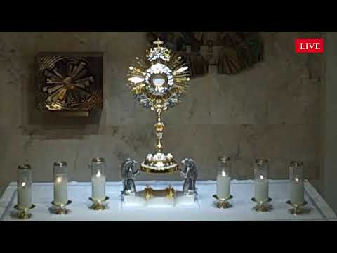 LIVE Eucharistic Holy Hour!! List your intentions below...