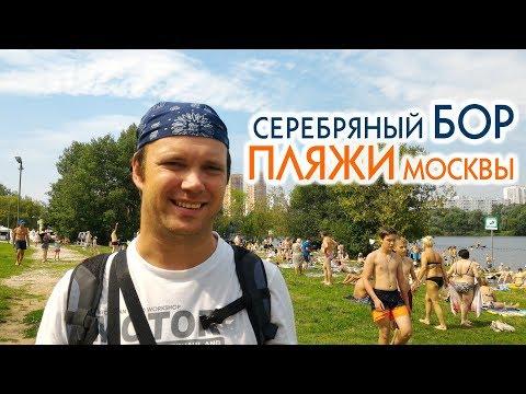 Серебряный бор. Все пляжи Серебряного бора. Москва
