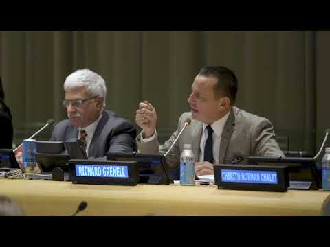 Ambassadors Craft and Grenell at the United Nations
