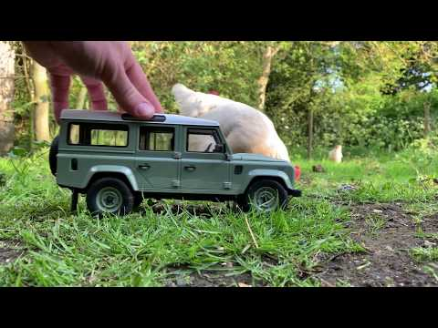 Mini Land Rovers - Rediscover your spirit of adventure