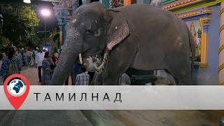 В отпуск в Индию. Часть 2. Тамил-Наду. Пондичерри