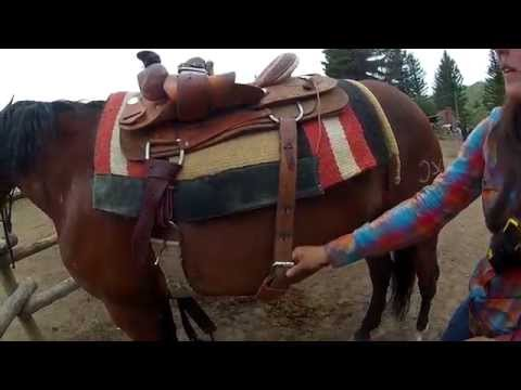 How to put on a Western Saddle