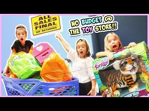 NO BUDGET AT TOYS R' US!! WE BOUGHT THE WHOLE STORE!!