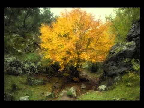 100 postales de otoño