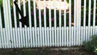 Front Yard Fence With Animal Protection - Construction Design Tips
