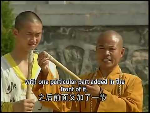 Shaolin kung fu flail staff