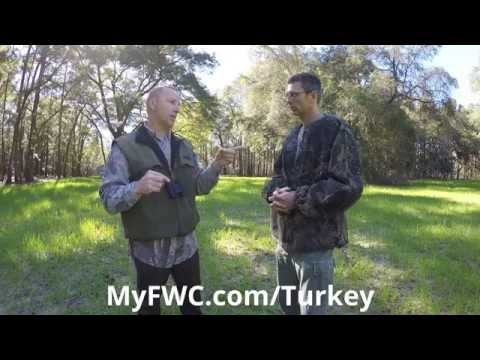 Spring Turkey Hunting On Florida's WMAs