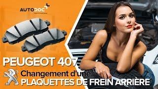 Manuel PEUGEOT 407 gratuit téléchanger