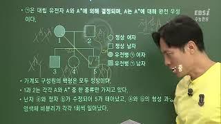 [2017 수능완성 생명과학1] 09강 유전자 이상과 …
