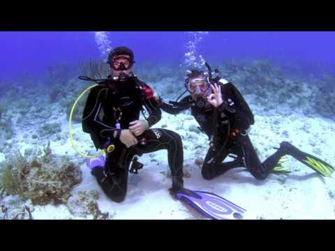 MUSSALLI'S DIVING THE BRITISH VIRGIN ISLANDS 2017