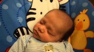 6 Week Old Sleeping, Snoring, and Dream Eating