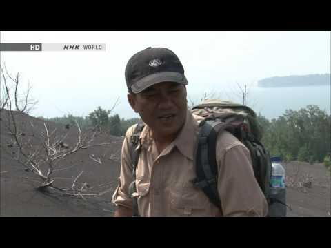 NHK Great Nature 2013 The Mystery of Javas Volcanoes Indonesia