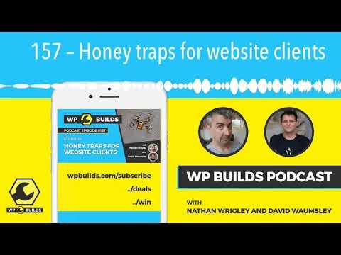 157-–-honey-traps-for-website-clients