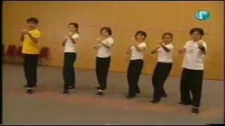 2001 新卧虎藏龙 Singapore Mediacorp Kung Fu training with Master Wu QiuHua | Part 1