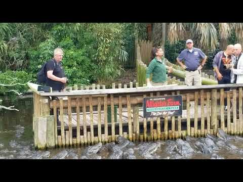 Alligator Farm - St. Augustine, Florida