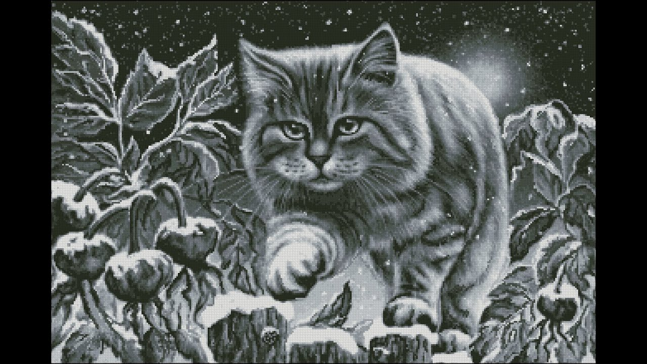 вышитый черный кот схема