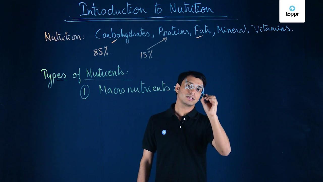 Nutrition in Animals: Heterotrophic Nutrition, Process