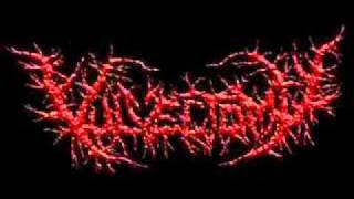 Vulvectomy-Masturbating with Defecated Entrails
