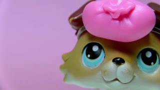 Littlest Pet Shop: Sweetheart (episode #22: Forgetting And Forgotten)