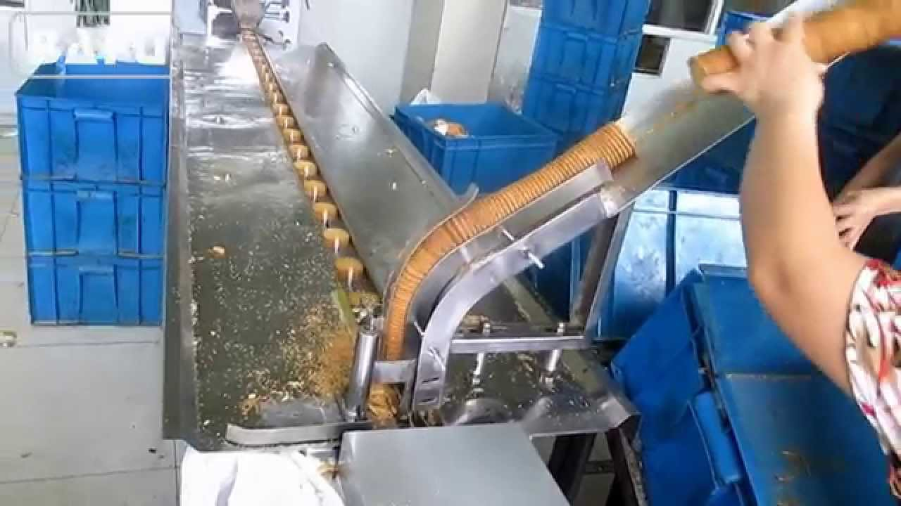 Used Biscuit Roll Wrapping Machine for Sale at Raymond