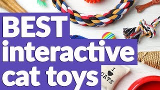 Best Interactive Cat Toy in 2019 | 7 TOP RATED Interactive Cat Toys
