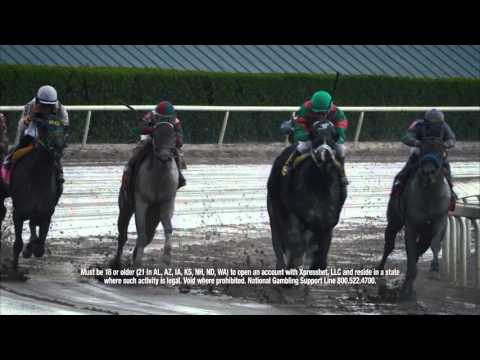 Gulfstream Park Replay Show | April 3, 2016
