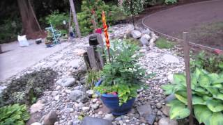 May 2014- Life and yard update.. Thumbnail