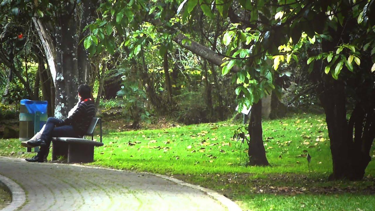 #7776, Una Pareja Sentada En Un Parque Hablando [Efecto