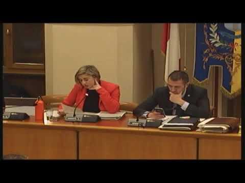 Consiglio Comunale 10 febbraio 2020 Int Ascensori sovrappasso