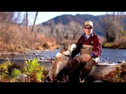 Fly Fishing On Colorado's Roaring Fork River