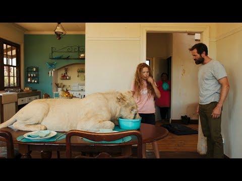 女孩养了一只大白狮当宠物,别人都不敢靠近,一部温情动物电影