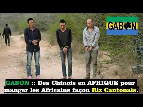 GABON : Des Chinois en AFRIQUE pour  manger les Africains (INTOX)