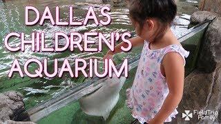 Field Trip Family / Dallas / Children's Aquarium at Fair Park