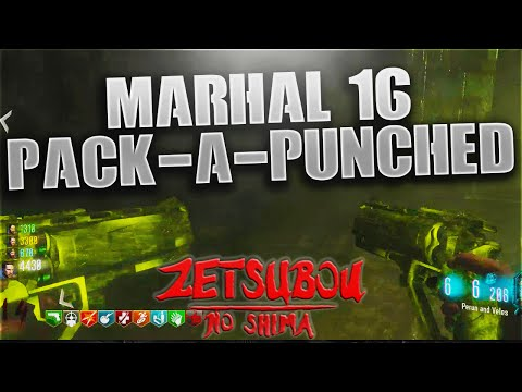 "Black Ops 3 - ""Puren and Veles"" Pack-A-Punched Marshal 16! (Zetsubo No Shima)"