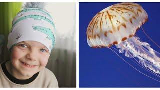 Медуза, ми друзья? Найкращий спосіб робити з дитиною уроки.