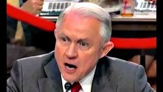Jeff Sessions HEATED response to Ron Wyden Free HD Video