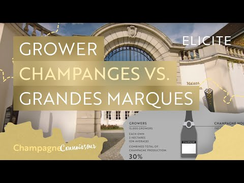 Champagne Houses: Growers Vs Grandes Marques