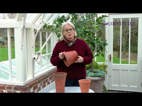 Alitex Series Video: How to clean flower pots