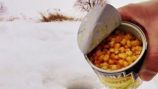 Прикормил КУКУРУЗОЙ Зимой Клюет как из Пулемета Подводная съемка