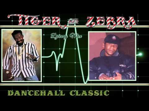 Tiger and Zebra Dancehall Classic Sizzling mix by Djeasy