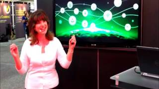 ThreatTrack Security In-Booth Presentation at Black Hat 2015 by Trade Show Presenter Emilie Barta