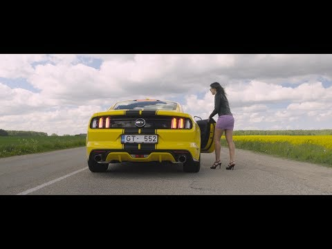 QUIZ 5 - THE STANG  (BURNOUTS/DONUTS/PICK UP A RANDOM GIRL)