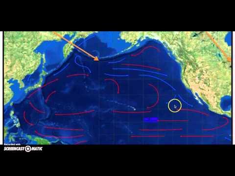 Pacific Ocean Currents Screencast
