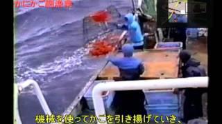 かにかご網漁業